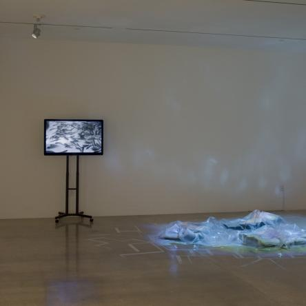install image of 'Grasping fragments, or otherwise calculating distance' at Visual Arts Center, UT Austin