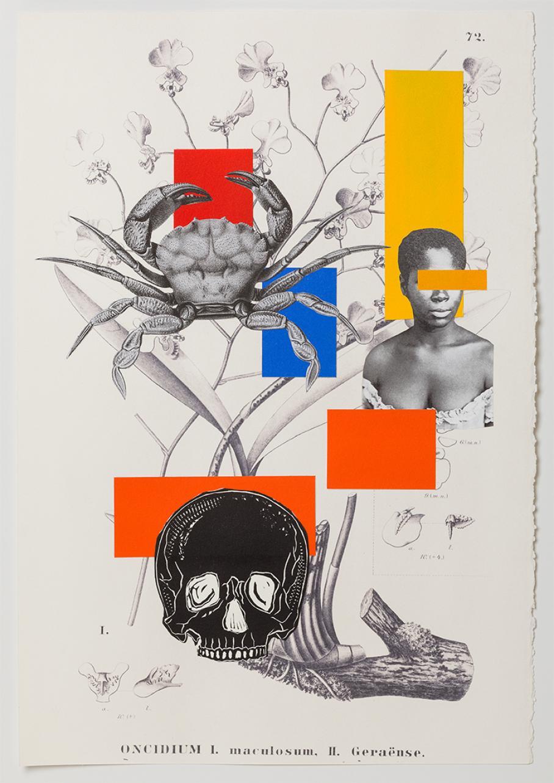 work by Rosana Paulino
