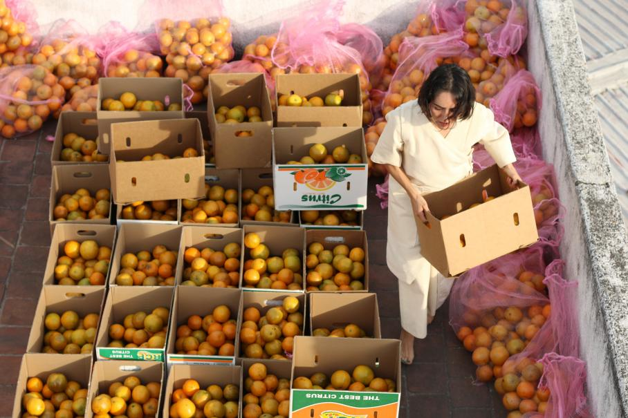 Carmen Argote, Visual Arts Center, woman carrying crate of citrus fruit, surrounded by many other crates of fruit