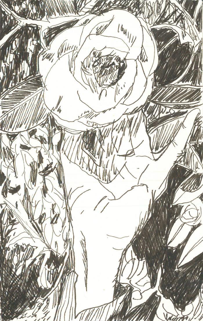 artwork by Lauren Moya Ford